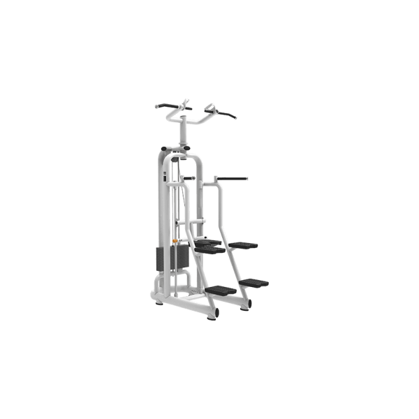 Assisted-DipChin-Small-Machine