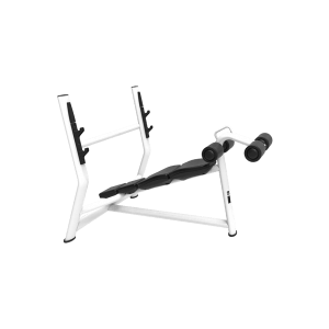 Incline-Bottom-Barbell-Bench-Mini