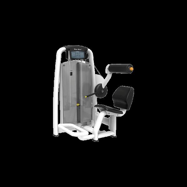 Lower-Back-Machine